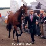 Boekelo in 2005
