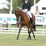 Mannie at Saumur, 2005