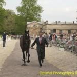 Badminton Horse Trials 2011